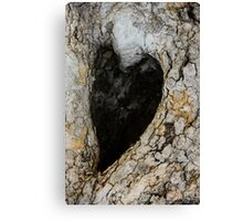 ♥The Heart Of Nature ♥ Canvas Print