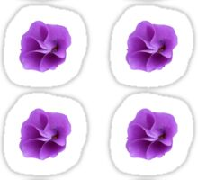 Purple Flower Sticker