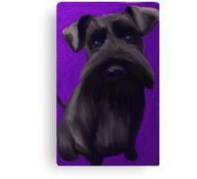 Schnauzer Puppy Canvas Print