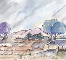 Farm shed in Magaliesburg by Maree Clarkson