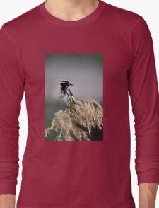 Australian Honeyeater - Looking Long Sleeve T-Shirt