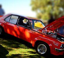1975 Holden SL/R 5000 Torana by Glenn Bumford