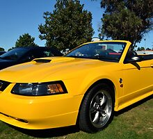 2004 Ford Mustang (40th Anniversary Edition) by Glenn Bumford
