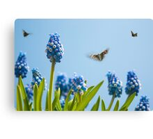 Something in the air... Canvas Print