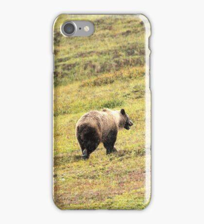 Griz II iPhone Case/Skin