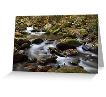 Mountain Melodies Greeting Card