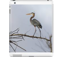 Heavenly Heron iPad Case/Skin