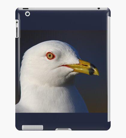 Ring-billed Gull iPad Case/Skin