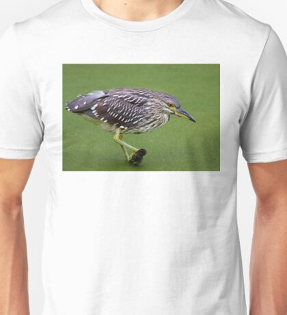 Juvenile Black-crowned Night Heron T-Shirt