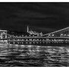 A Wonderful  Evening in Budapest by Robert Kelch, M.D.