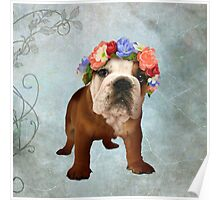 British Bulldog Puppy Flowers Poster