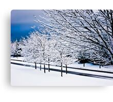 'Blue Winter' Canvas Print