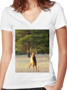Bull Elk in Montana Women's Fitted V-Neck T-Shirt
