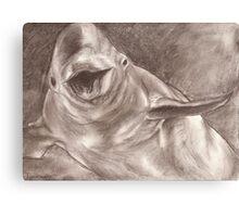 Happy Beluga Canvas Print