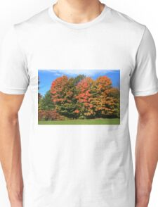 Tress  in Fall colours.  Unisex T-Shirt