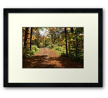 Fall mountain forest road.  Framed Print
