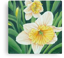 Spring Daffodils Painting Canvas Print