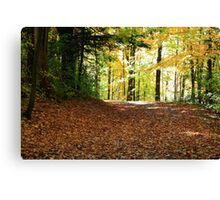 Forest road in Fall season. Canvas Print