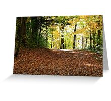 Forest road in Fall season. Greeting Card