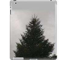 Fir tree winter iPad Case/Skin
