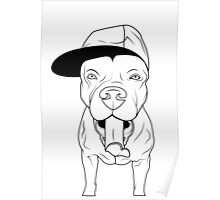 dogs, cute puppy pitbull Poster