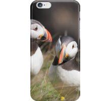 Puffin Parley iPhone Case/Skin