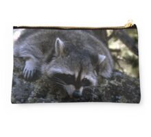 Raccoon Relaxin | Stanleigh and Friends Studio Pouch