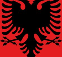 Albanian national flag in authentic color and scale. Sticker