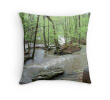 sweet water  creek state park Throw Pillow