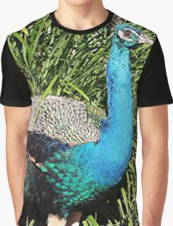 Peacock bird brightly colored Graphic T-Shirt