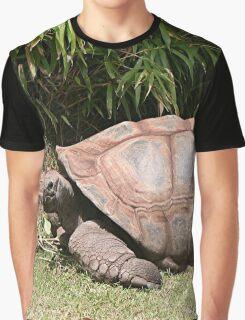 Tortoise 1 Graphic T-Shirt
