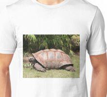 Tortoise 1 Unisex T-Shirt