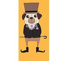 Funny Cartoon Pets Pug Dog Photographic Print