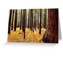 Beams & Trees Greeting Card