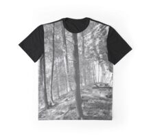 Sandstone Steps in the Woods Graphic T-Shirt
