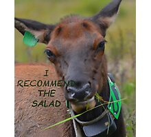 I Recommend The Salad Photographic Print