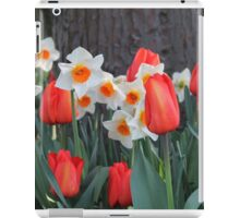 Tulips! iPad Case/Skin