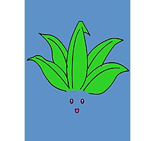 Oddish Photographic Print
