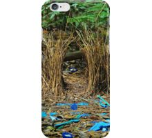 Bowerbird's Bower iPhone Case/Skin