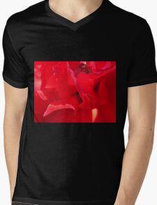 Fire Red Petals Mens V-Neck T-Shirt