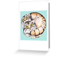 Cat Ball Friendship Greeting Card