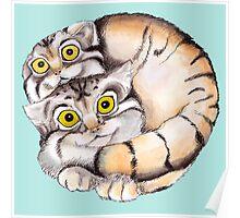 Cat Ball Friendship Poster