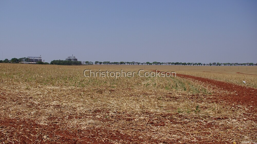 Corn Stubble by Christopher Cookson