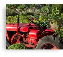 Red Garden Tractor featured in boutique garden Canvas Print