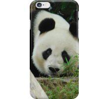 Wang Wang the panda iPhone Case/Skin