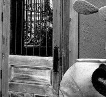 Tucson Door ~ Black & White Sticker