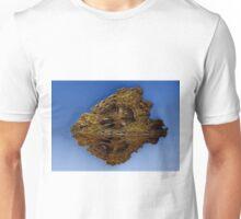 Arrowhead - landscape Unisex T-Shirt
