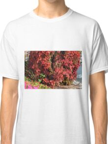 Beautiful colorful bush with red leaves. Classic T-Shirt