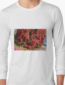 Beautiful colorful bush with red leaves. Long Sleeve T-Shirt