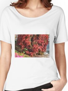 Beautiful colorful bush with red leaves. Women's Relaxed Fit T-Shirt